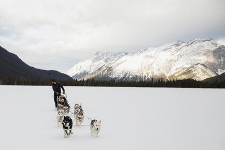 Dogsled in snowy field below mountainsの写真素材 [FYI02274417]