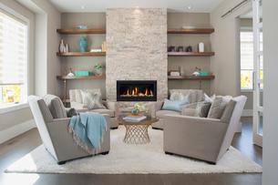 Elegant living room with fireplaceの写真素材 [FYI02275793]