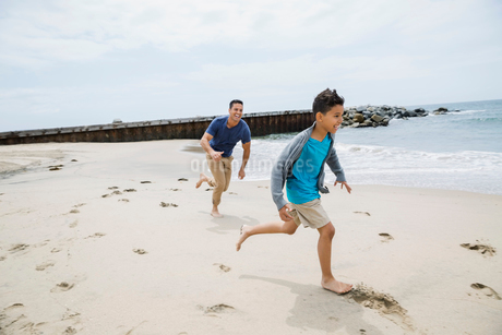 Father running and chasing son on sunny beachの写真素材 [FYI02275861]