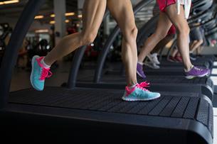 Legs of women running on treadmills at gymの写真素材 [FYI02276414]