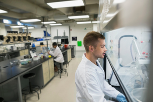 Scientist using equipment in laboratoryの写真素材 [FYI02276976]