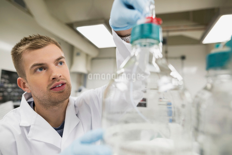 Scientist using equipment in laboratoryの写真素材 [FYI02277406]