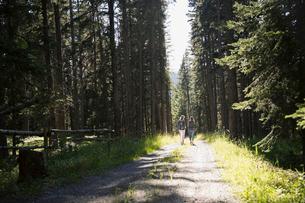Women walking on path in sunny woodsの写真素材 [FYI02278511]