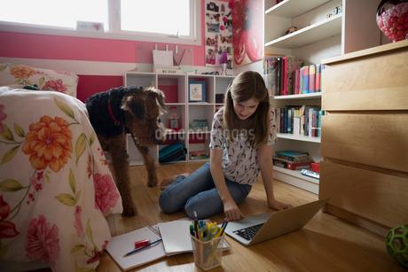 Dog watching girl doing homework on bedroom floorの写真素材 [FYI02278992]