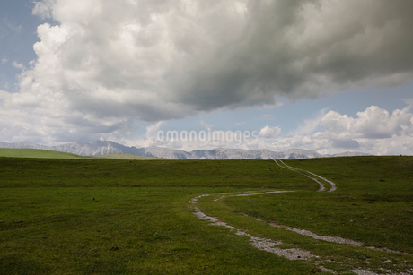 Winding path in remote rural landscapeの写真素材 [FYI02279815]