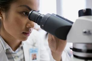 Close up focused medical scientist using microscopeの写真素材 [FYI02283058]