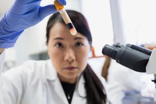 Medical scientist examining liquid vial at microscope laboratoryの写真素材 [FYI02283303]