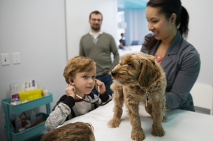Veterinarian and boy with stethoscope examining dogの写真素材 [FYI02284425]