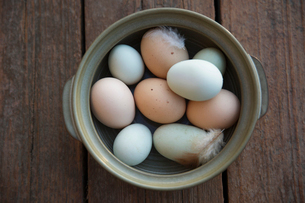 Fresh organic multicolor eggs and feathers in bowlの写真素材 [FYI02284826]