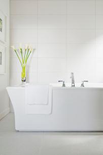 White bath tub in contemporary bathroom.の写真素材 [FYI02285796]
