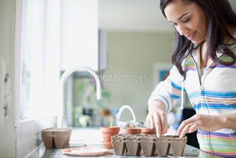 pretty latino woman planting seedsの写真素材 [FYI02286367]