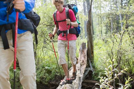 hikers walking on fallen tree bridgeの写真素材 [FYI02286528]