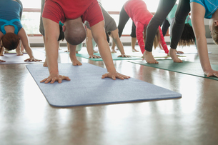 yoga class doing downward dogの写真素材 [FYI02286579]