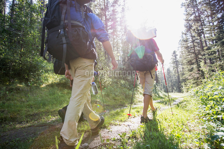 view from behind of three hikers with backpacksの写真素材 [FYI02286625]