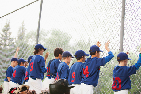 view from behind of boys baseball team along chainlink fenceの写真素材 [FYI02286976]