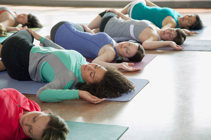 women stretching during yoga classの写真素材 [FYI02287459]