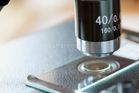 closeup of microscope and slideの写真素材 [FYI02287531]