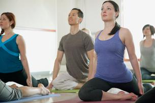 yoga class stretchingの写真素材 [FYI02287600]