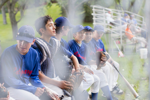 Boys baseball team talking while sitting on bench.の写真素材 [FYI02287692]