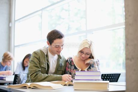 classmates studying togetherの写真素材 [FYI02288331]