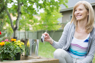 mature woman staining wooden flowerbed outdoorsの写真素材 [FYI02288785]