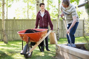 father and son working in yard togetherの写真素材 [FYI02289092]