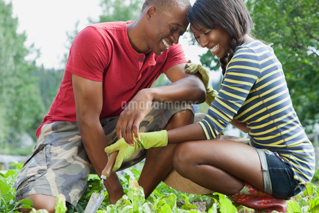 couple being affectionate while working in gardenの写真素材 [FYI02289193]