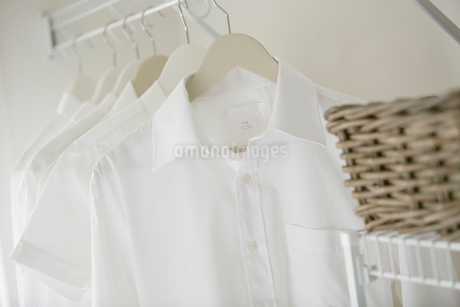 Close-up of clean, white shirts in closet.の写真素材 [FYI02289648]