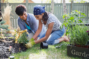 Mother and daughter planting flowers in yardの写真素材 [FYI02290252]