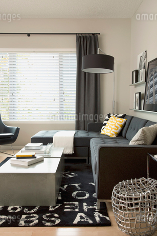 Black sectional sofa in contemporary living roomの写真素材 [FYI02290704]