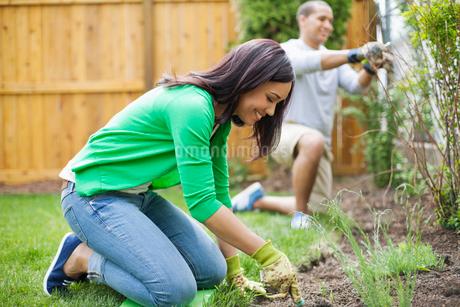 couple working in backyard togetherの写真素材 [FYI02291008]