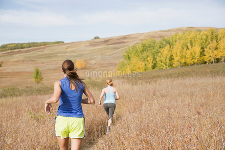 View from behind of two women running in field.の写真素材 [FYI02291623]