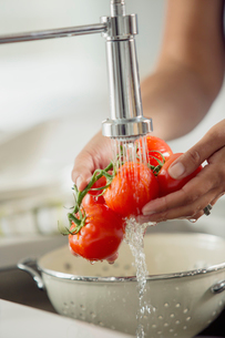 Mid-adult woman rinsing tomatoes in sink.の写真素材 [FYI02291772]