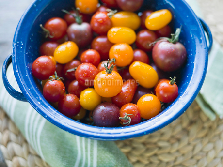 Washed cherry Tomatoes in colanderの写真素材 [FYI02292024]