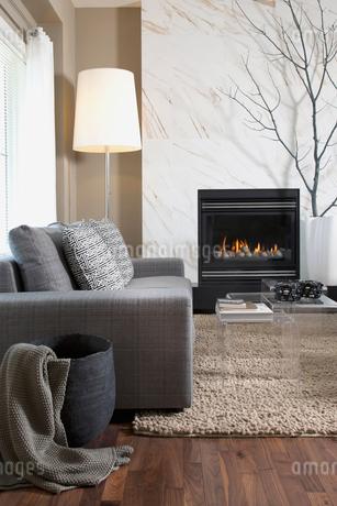 Interior of contemporary living roomの写真素材 [FYI02292420]