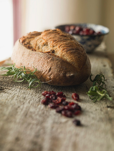 Loaf of bread and ingredients on counterの写真素材 [FYI02292621]