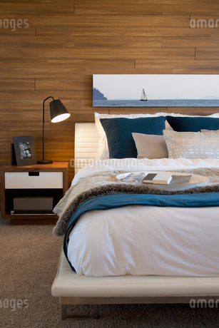 Interior of contemporary bedroomの写真素材 [FYI02292732]