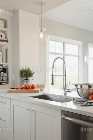 Gooseneck spring faucet in contemporary kitchenの写真素材 [FYI02294006]