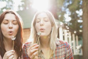 Women blowing dandelion seeds outdoorsの写真素材 [FYI02294220]