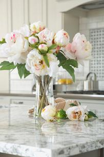 Flower vase on granite kitchen islandの写真素材 [FYI02294282]