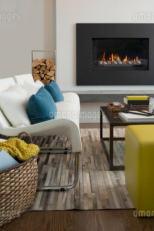 Interior of a contemporary living roomの写真素材 [FYI02294482]