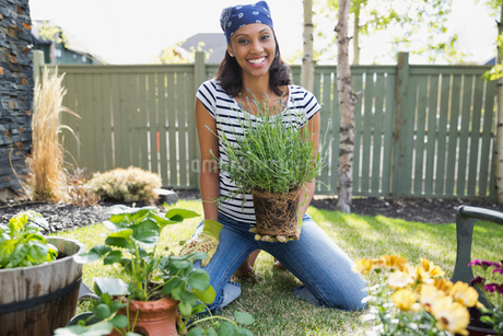 Portrait of woman holding plant while gardening in yardの写真素材 [FYI02294594]