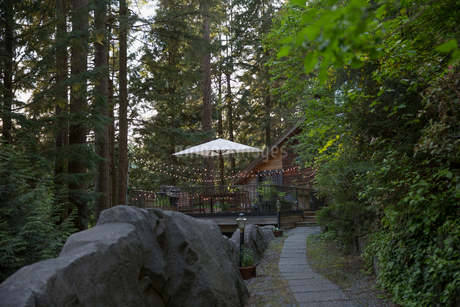 Patio umbrella and string lights on deck cabin in woodsの写真素材 [FYI02296735]