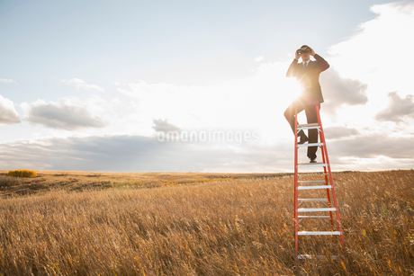 Businessman looking through binoculars on ladderの写真素材 [FYI02298259]