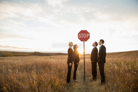Business people looking at stop sign in fieldの写真素材 [FYI02302635]