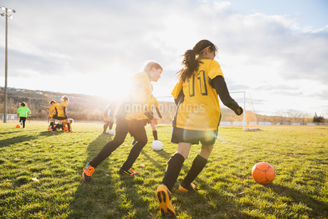 Girls practicing soccer drills on fieldの写真素材 [FYI02302791]