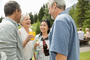 Mature friends having a picnicの写真素材 [FYI02303303]