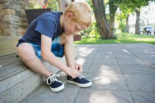 Little boy tying shoelacesの写真素材 [FYI02305302]