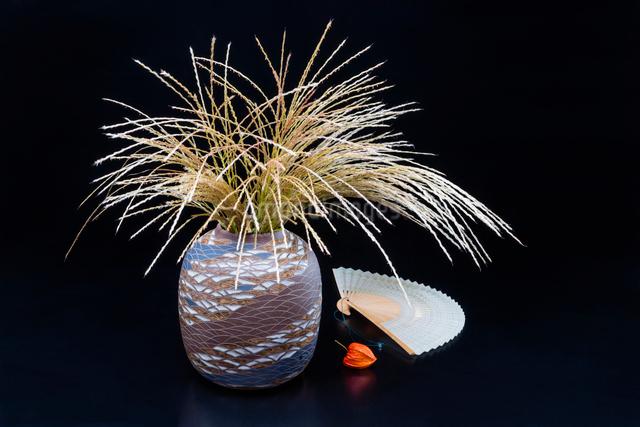 ススキの生け花と扇とホオズキの写真素材 [FYI02306316]