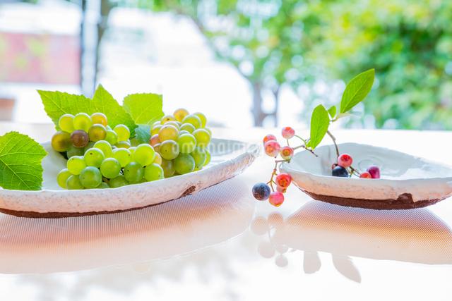 白い陶器の器とブルーベリーとブドウの写真素材 [FYI02306361]